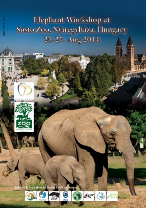 Participation to the Elephant Workshop, Sosto Zoo, Hungary, 25-27 Aug 2014